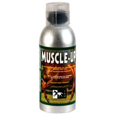 TRM Muscle-Up hest 960ml