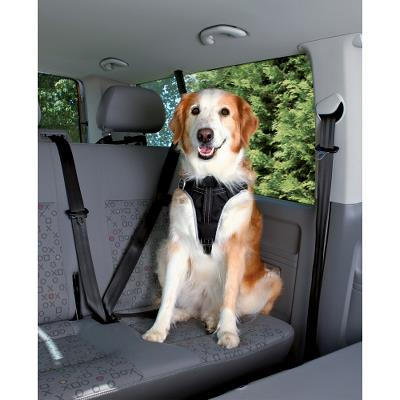 Dog Protect safety sele, S~M: 40–55 cm/20 mm, sort