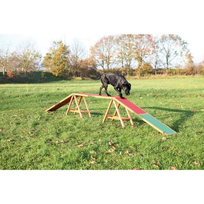 Dog Activity Agility dogwalk, 456 × 64 × 30 cm
